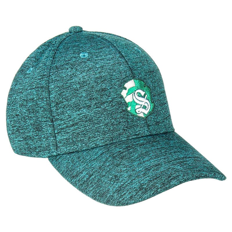 Gorra baseball Slytherin...